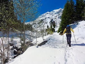 Le Moleson, Gruyeres, Friburg, Switzerland